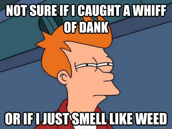 not sure if i caught a whiff of dank or if i just smell like - Futurama Fry