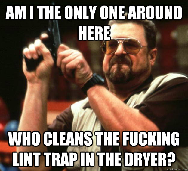 am i the only one around here who cleans the fucking lint tr - Angry Walter
