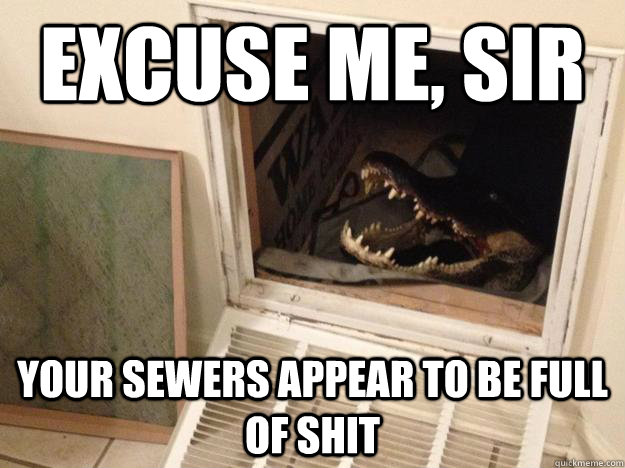excuse me sir your sewers appear to be full of shit - Questioning croc