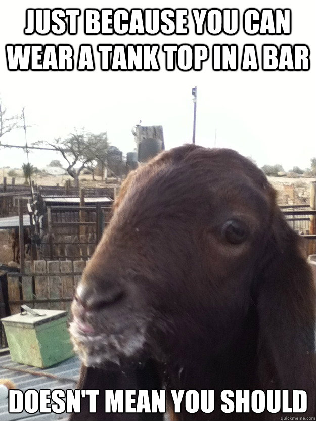 just because you can wear a tank top in a bar doesnt mean y - Rational Goat