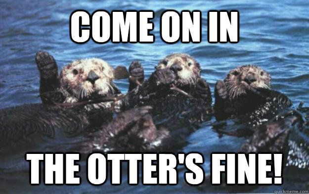 come on in the otters fine - Otter Puns