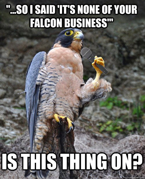 so i said its none of your falcon business is this t - Microphone Falcon