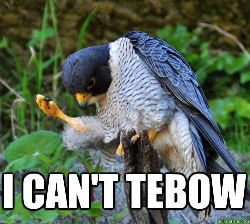 i cant tebow  - Success Falcon