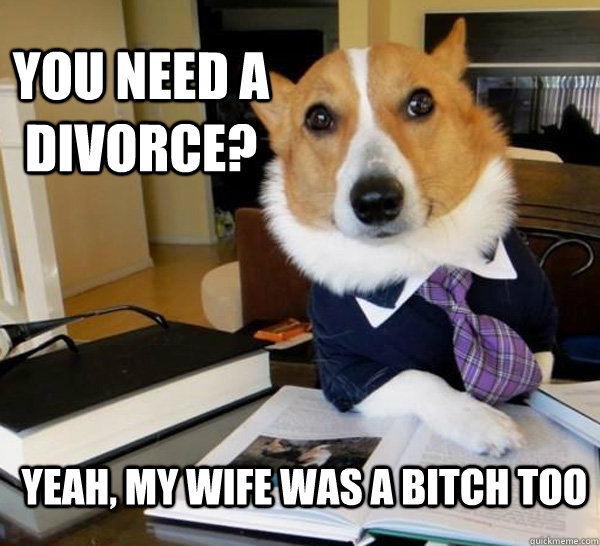 you need a divorce yeah my wife was a bitch too  - Lawyer Dog
