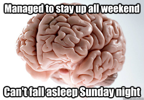 managed to stay up all weekend cant fall asleep sunday nigh - Scumbag Brain
