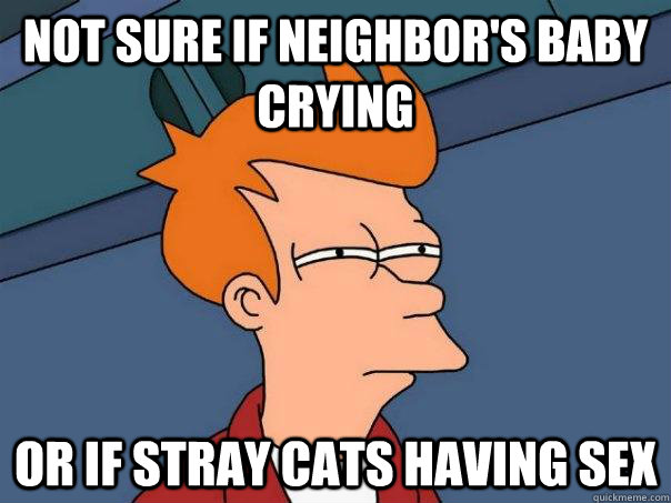 not sure if neighbors baby crying or if stray cats having s - Futurama Fry
