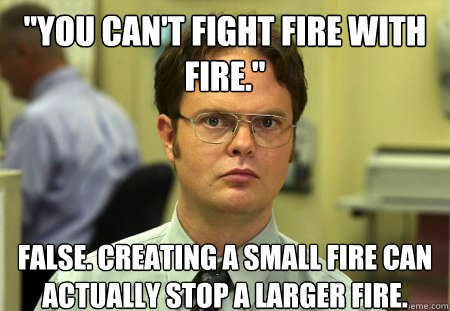 you cant fight fire with fire false creating a small fi - Schrute