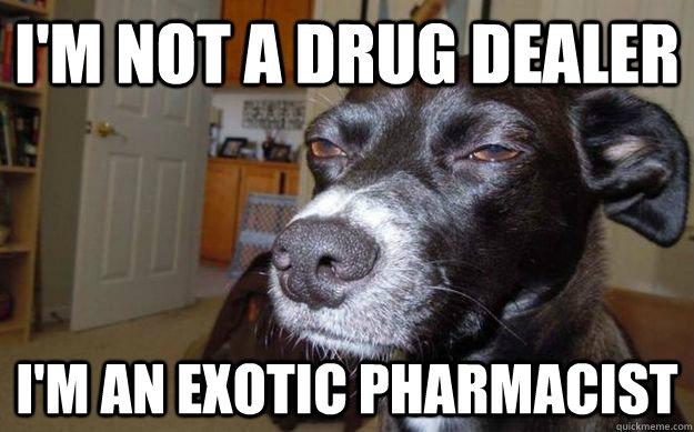 Dating a drug dealer
