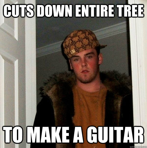 cuts down entire tree to make a guitar - Scumbag Steve
