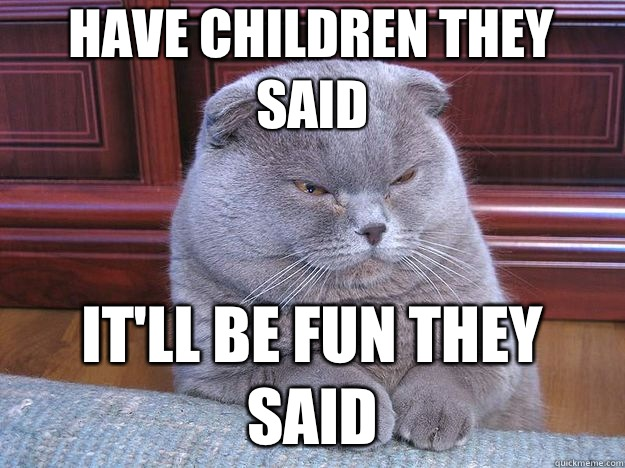 Have children they said Itll be fun they said - Grumpy Cat