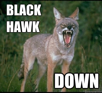 black hawk down - YELLING YOTES FAN COYOTE
