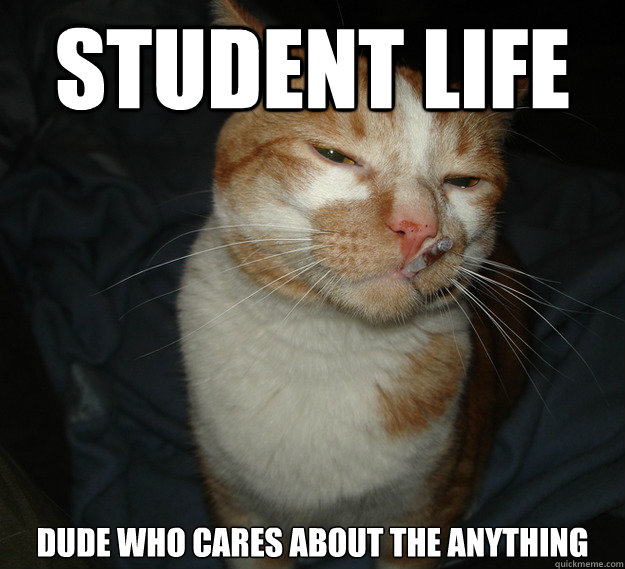 student life dude who cares about the anything  - Cool Cat Craig