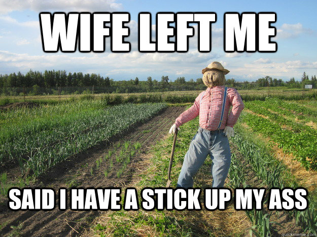 wife left me said i have a stick up my ass - Scarecrow
