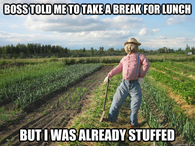 boss told me to take a break for lunch but i was already stu - Scarecrow