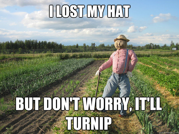 i lost my hat but dont worry itll turnip  - Scarecrow