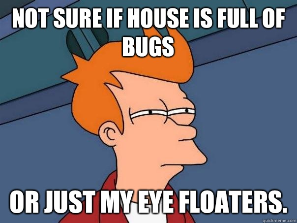 Not sure if house is full of bugs Or just my eye floaters  - Futurama Fry