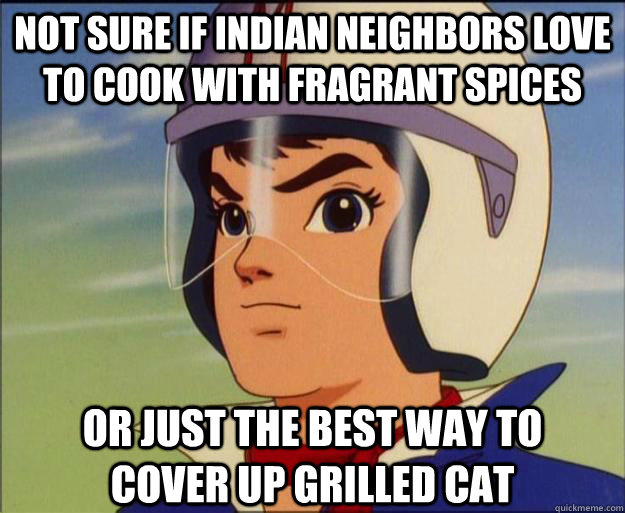 not sure if indian neighbors love to cook with fragrant spic - Speed Racist