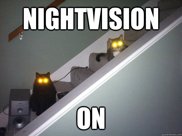 nightvision on - demoncats
