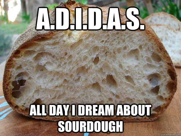 adidas all day i dream about sourdough - 