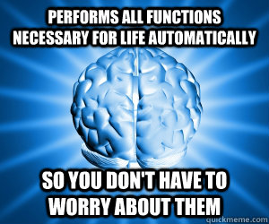 performs all functions necessary for life automatically so y - Good Guy Brain