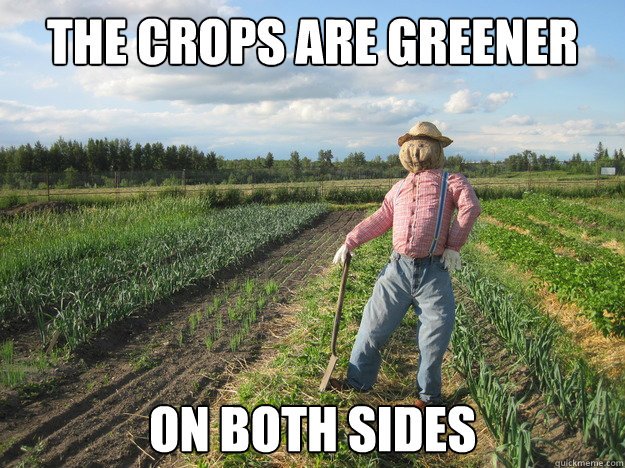 the crops are greener on both sides - Scarecrow