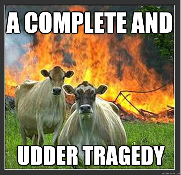 a complete and udder tragedy - Evil cows