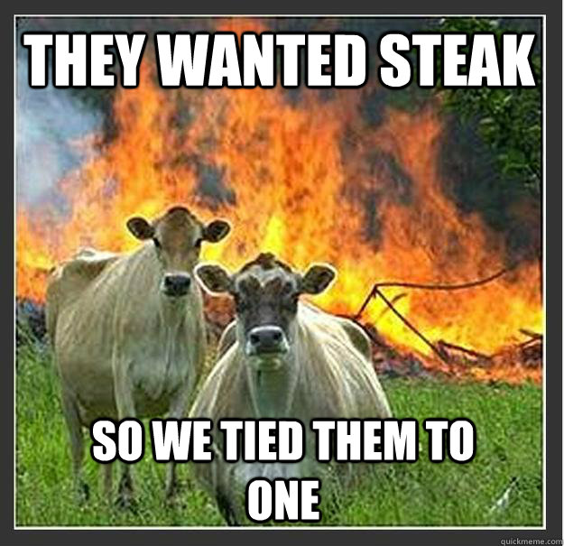 they wanted steak so we tied them to one - Evil cows