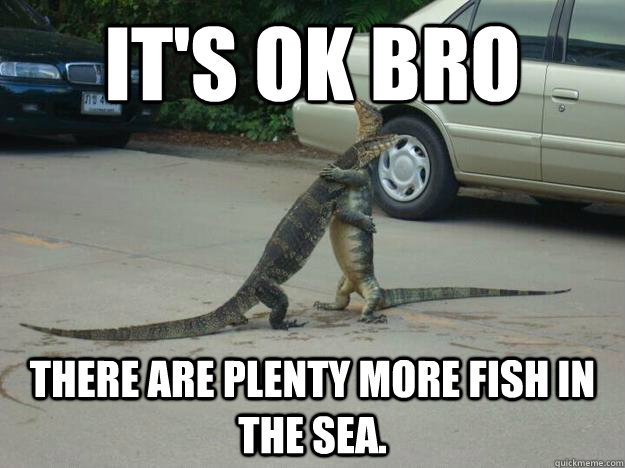 It 39 s ok bro there are plenty more fish in the sea for Plenty of fish meme