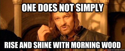 one does not simply rise and shine with morning wood - One Does Not Simply