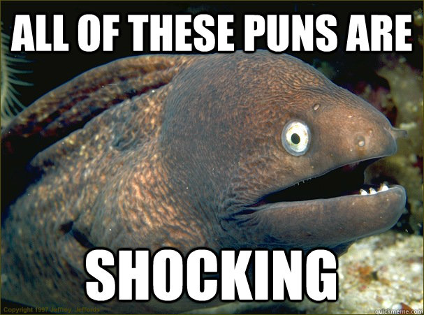 all of these puns are shocking - Bad Joke Eel