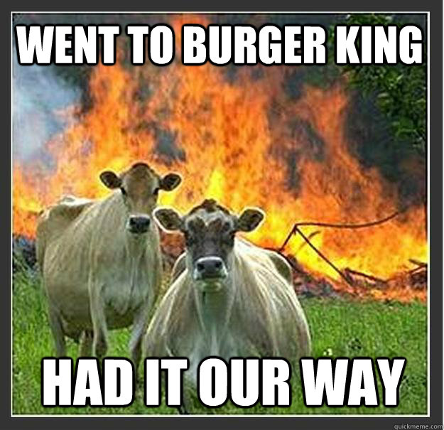 went to burger king had it our way - Evil cows