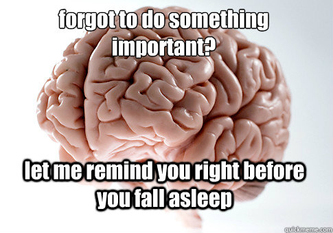 forgot to do something important let me remind you right be - Scumbag Brain