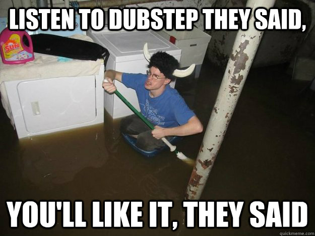 listen to dubstep they said youll like it they said - Laundry Room Viking