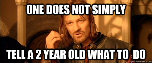 one does not simply tell a 2 year old what to do  - One Does Not Simply