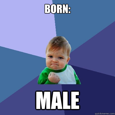 born male - Success Kid