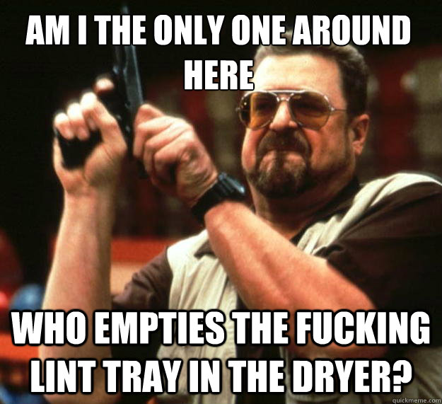 am i the only one around here who empties the fucking lint t - Walter
