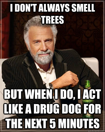 i dont always smell trees but when i do i act like a drug  - The Most Interesting Man In The World