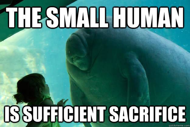 the small human is sufficient sacrifice - Overlord Manatee