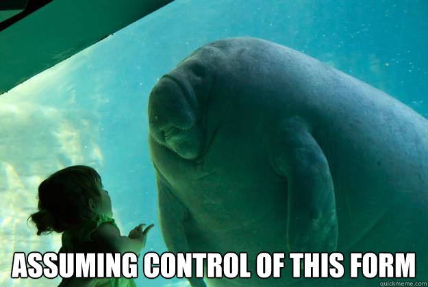 assuming control of this form - Overlord Manatee