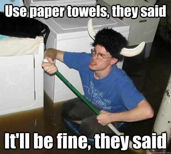 use paper towels they said itll be fine they said - They said