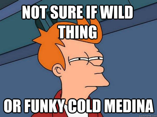 not sure if wild thing or funky cold medina - Futurama Fry