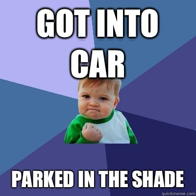 Got into car Parked in the shade  - Success Kid