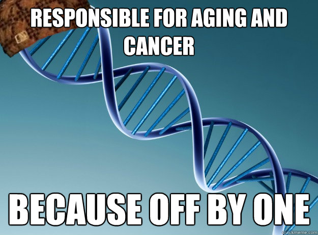 responsible for aging and cancer because off by one  - Scumbag Genetics