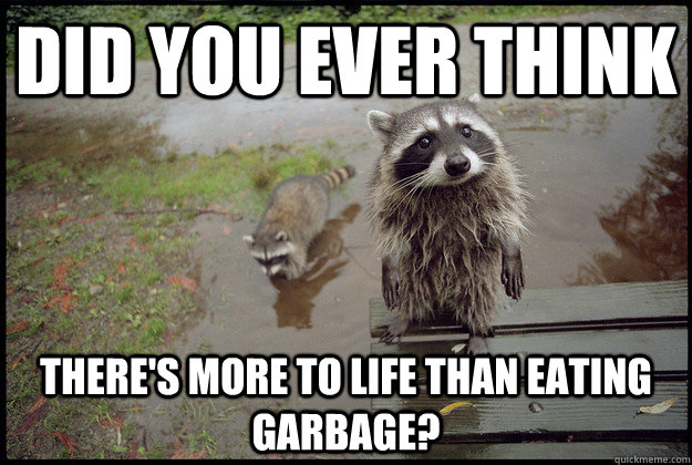 did you ever think theres more to life than eating garbage - Reality Raccoon