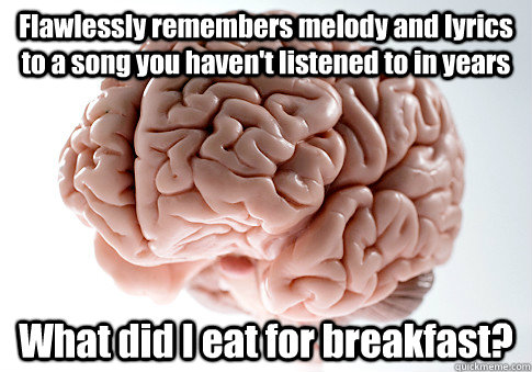 flawlessly remembers melody and lyrics to a song you havent - Scumbag Brain