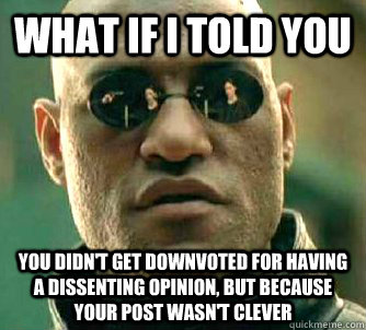 what if i told you you didnt get downvoted for having a dis - What if I told you