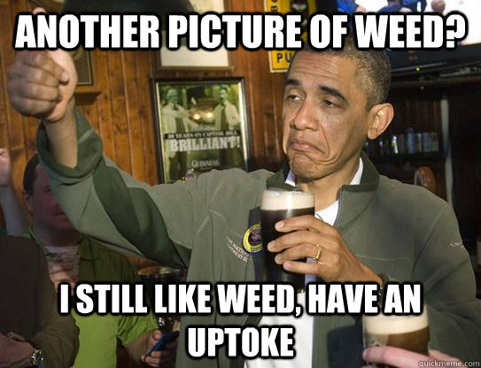 another picture of weed i still like weed have an uptoke - Upvoting Obama
