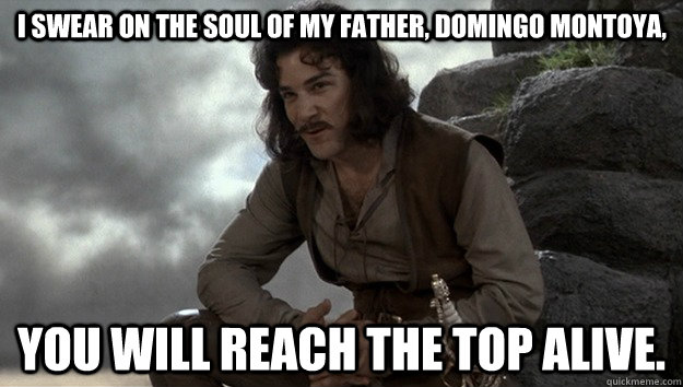i swear on the soul of my father domingo montoya you will - Good guy Inigo Montoya