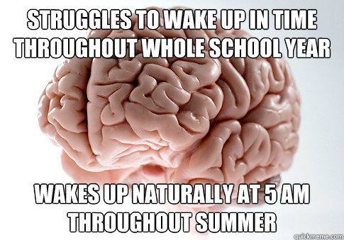 struggles to wake up in time throughout whole school year wa - Scumbag Brain