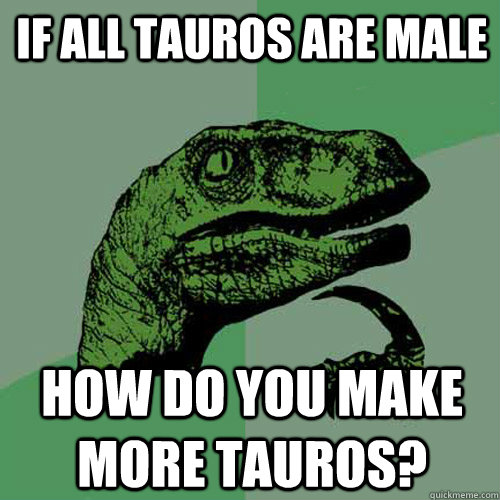 if all tauros are male how do you make more tauros - Philosoraptor